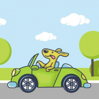 Animal Happy Drive Coloring
