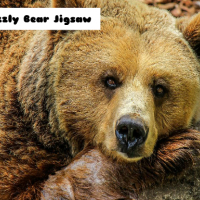 Grizzly Bear Jigsaw