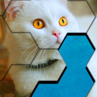 Blocks Hexa Jigsaw Puzzle™